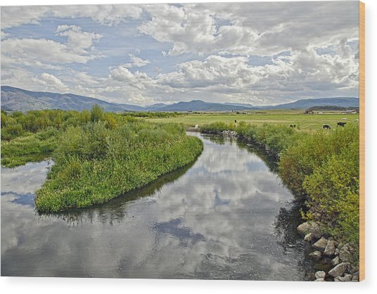 Fall Afternoon At Steamboat Springs Co. Wood Print by James Steele