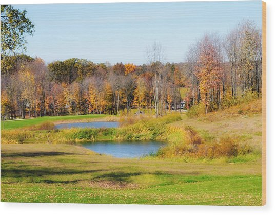 Fall At The Ponds Wood Print