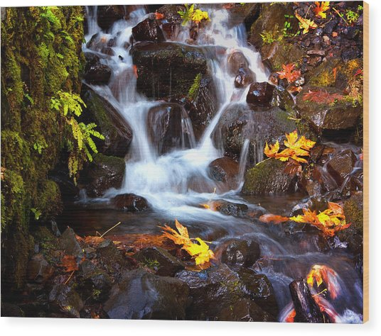 Fall At Wahkeena Wood Print