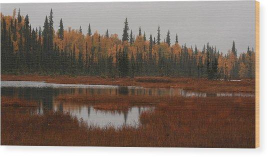 Fall In Alaska Wood Print
