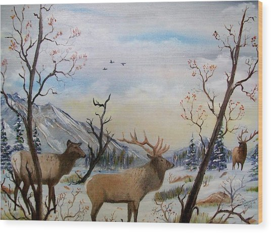 Fall In The Beartooth Mountains Wood Print
