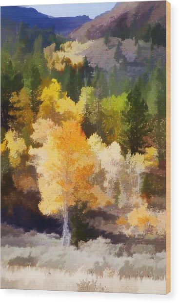 Fall In The Sierra Iv Wood Print