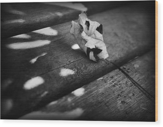 Fall Leaves Iv Wood Print