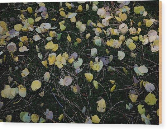 Fall Leaves Wood Print by John Wong
