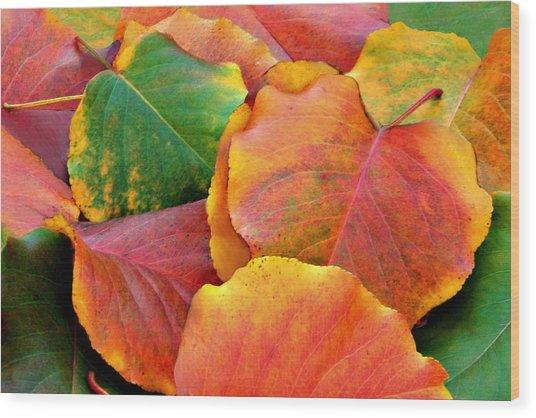 Fall Leaves Wood Print by Sheila Kay McIntyre