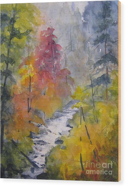 Fall Mountain Stream Wood Print