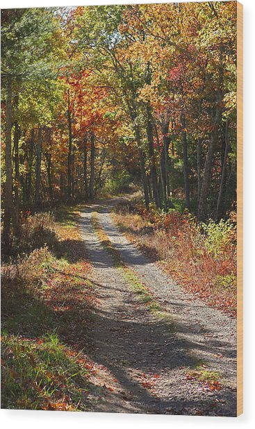 Fall On The Wyrick Trail Wood Print