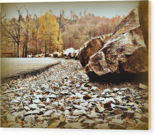 Fall Road Wood Print by Becky Foster