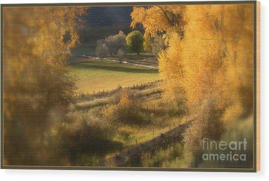 Fall View Wood Print