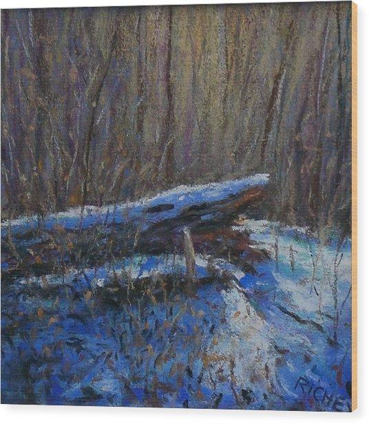 Fallen Wood In Winter Wood Print by Bob Richey