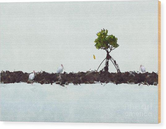 Falling Mangrove Leaf Wood Print
