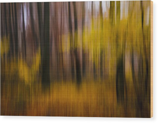 Falling Yellow Wood Print