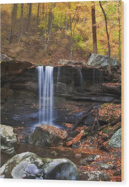 Falls At Frozen Head Wood Print by Charles Fletcher