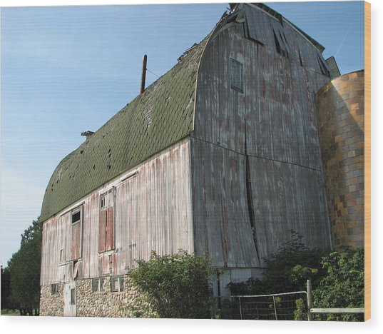 Family Barn Wood Print by Michelle Shull