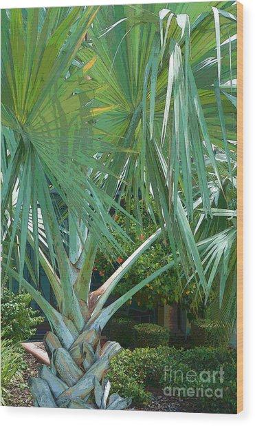 Fan Palm Wood Print