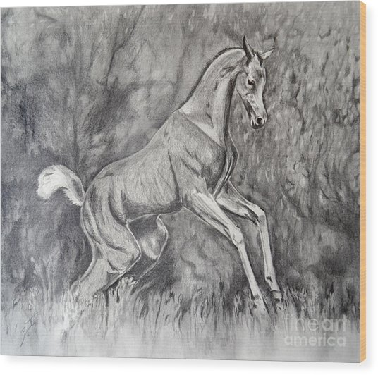 Fancifilly Wood Print