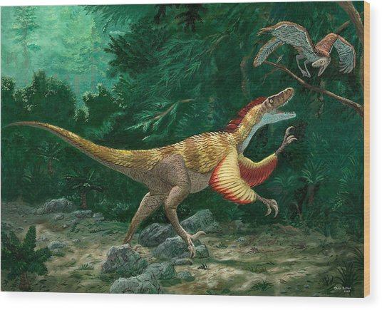 Feathered Dinosaurs Wood Print by Chris Butler