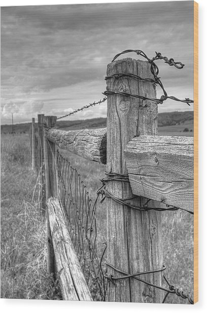 Fence And Wire Wood Print