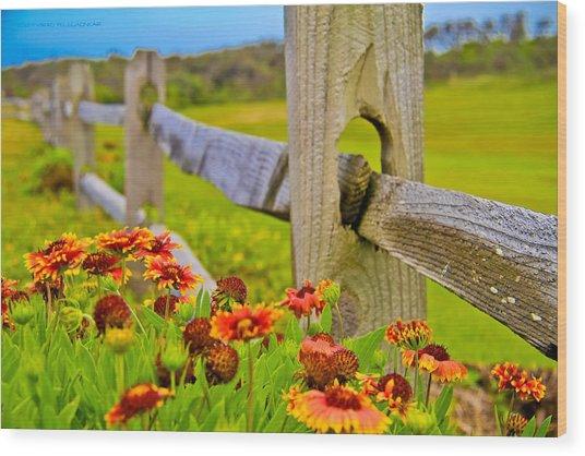 Fence Side Flowers Wood Print by Virag Yelegaonkar