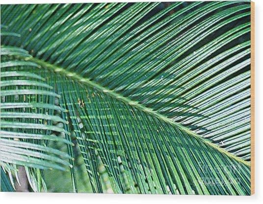 Ferns 56 Wood Print