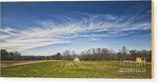 Field And Sky Wood Print
