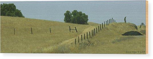 Field Fence Wood Print