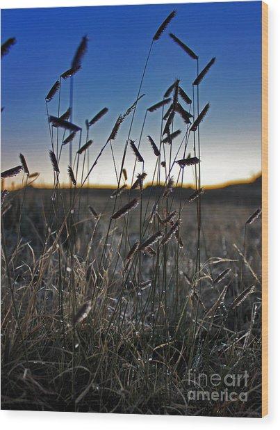 Field Of Wierdness Wood Print by Wesley Hahn