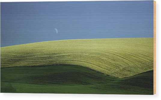 Fields And Quarter Moon Wood Print by Dale Stillman