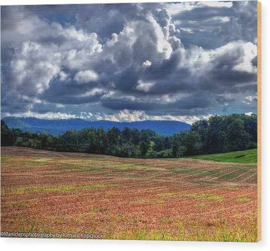 Fields Of Dreams Wood Print