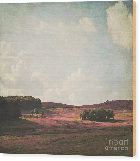 Fields Of Heather Wood Print