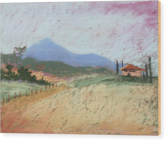 Fields Of Tuscany Wood Print
