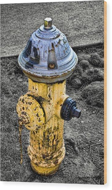 Fire Hydrant Wood Print by Bennie Reynolds