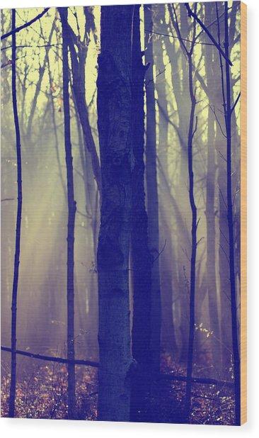 First Light Wood Print