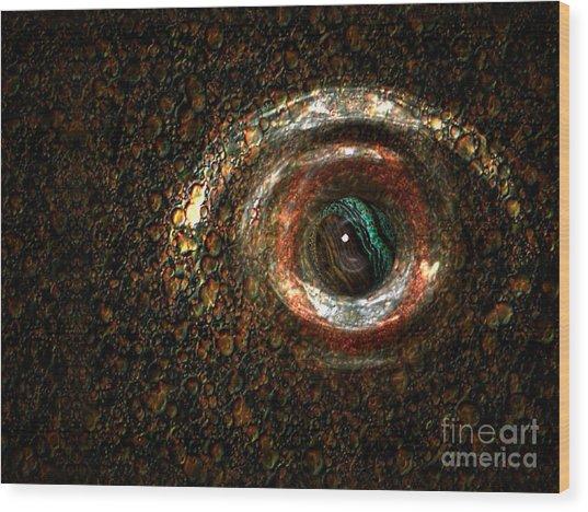 Fish Eye Wood Print
