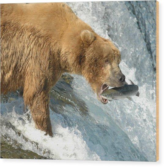 Fishing Bear Wood Print