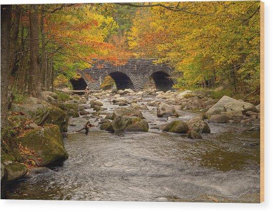 Fishing Bridge I Wood Print
