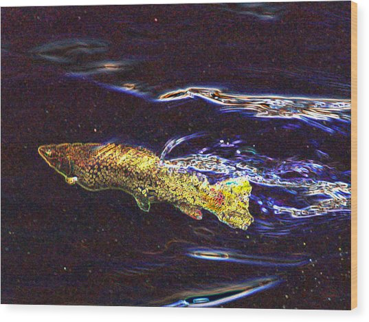 Fishy Fishy In The Brook Wood Print