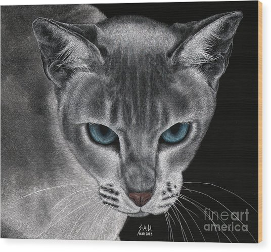 Flame Point Siemese Cat Wood Print