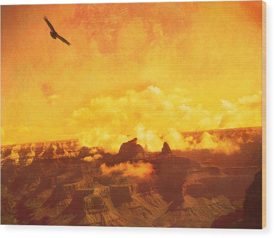 Flight Over Grand Canyon Wood Print