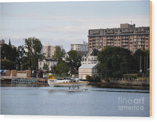 Float Plane In Victoria Inner Harbor Wood Print by Tanya  Searcy