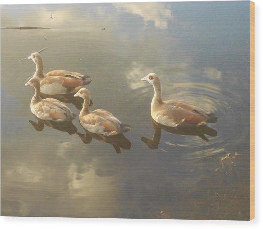 Floating Along Wood Print