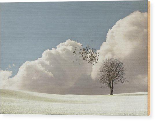 Flock Of Starlings Flying Wood Print
