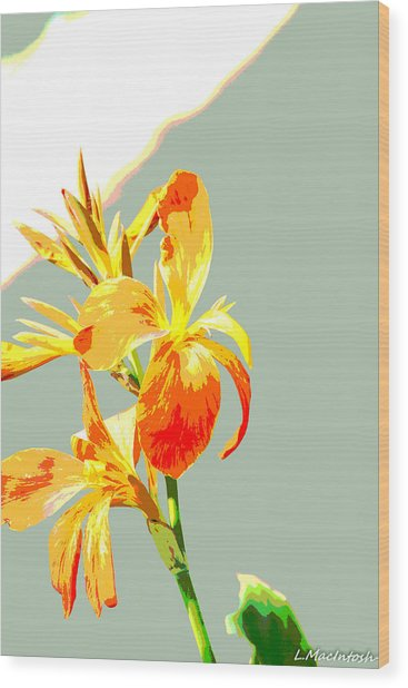 Floral Abstract Wood Print by Lauren MacIntosh