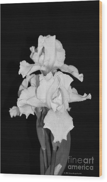Floral Black And White Iris Flower Bouquet Wood Print