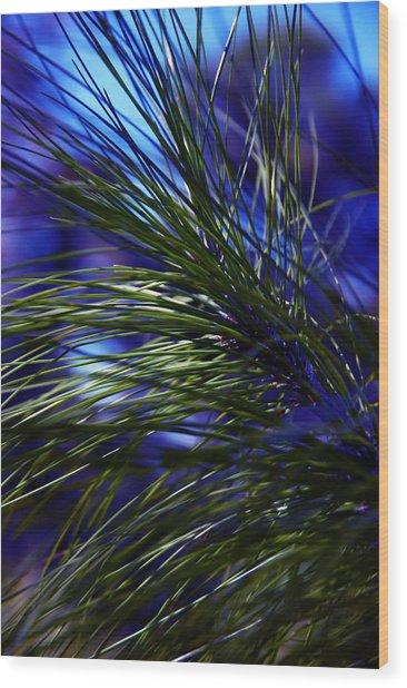 Florida Grass Wood Print