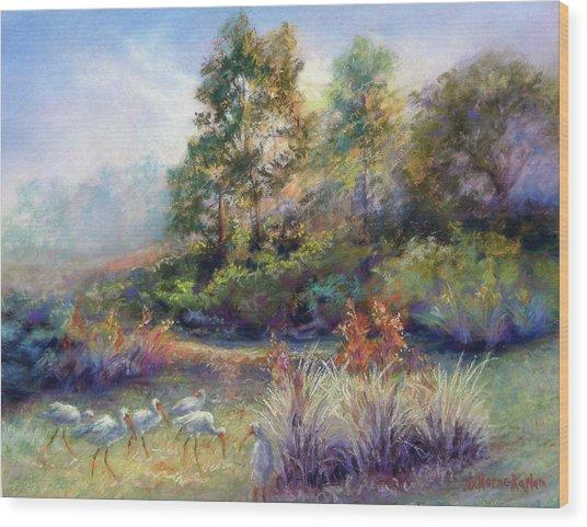 Florida Ibis Landscape Wood Print