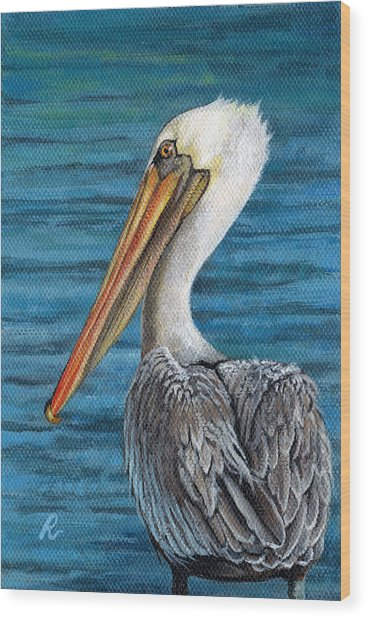 Florida Pelican Wood Print by Peggy Dreher
