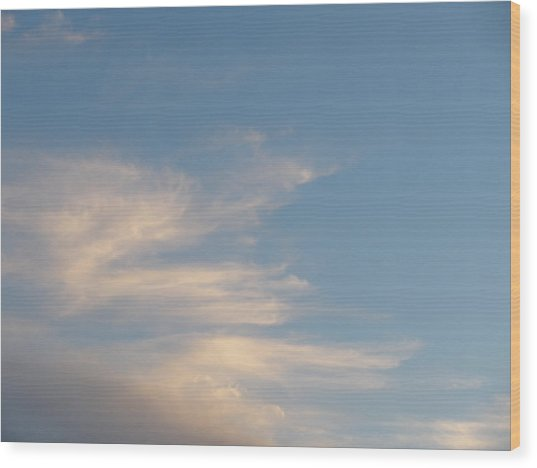 Florida Sky I Wood Print by Suzanne Fenster