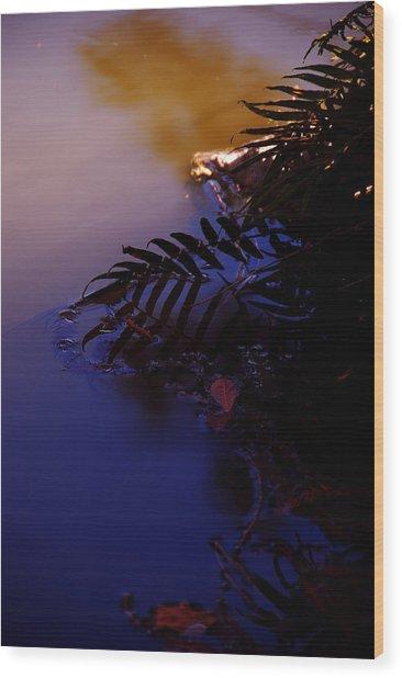 Florida Sunset 2 Wood Print