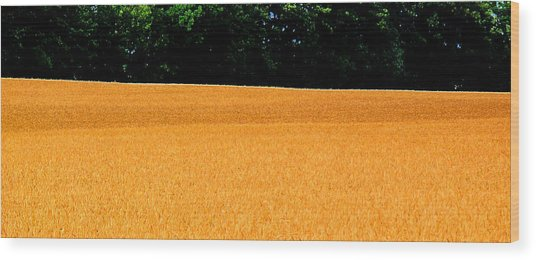 Flow Of The Field 3 Ae  Wood Print by Lyle Crump